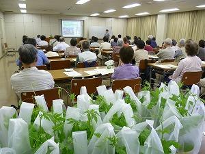 平成29年度 緑のカーテン作り方講習会を開催します